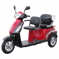 High Quality Electric Disabled Scooter in special offer, Electric Mobility Tricycle with Double Deluxe Saddle