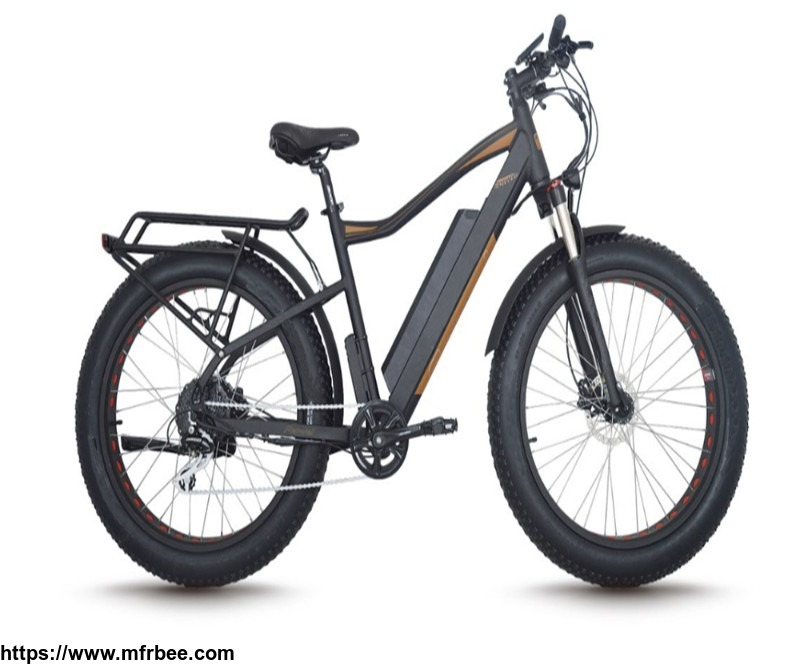light_weight_electric_bicycle_lithium_battery_mountain_electric_bike