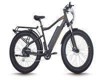 Light weight electric bicycle, lithium battery mountain electric bike
