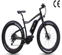 mountain electric bike,250W Bafang Mid-motor electric bike