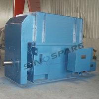 Custom High Voltage Motor for Cement Plant