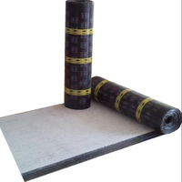 Construction building waterproof materials SBS modified bitumen sheet membrane supplier