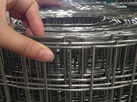 more images of Square welded wire mesh