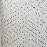 AISI316 Flexible stainless steel knotted mesh for animal fencing