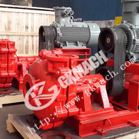 LAP Low Abrisive Slurry Pump