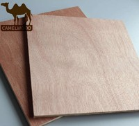 Hot sales great price commercial plywood for decoration