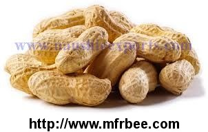 Offer To Sell Peanut