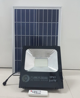 100W Outdoor Floodlight Solar Lamp for Garden Lighting