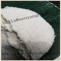 99% crystalline powder 2-FDCK 2FDCK 111982-50-4 2-fluorodeschloroketamin with good effect and quality bella@senyangchem.com