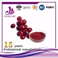 Cranberry fruit powder innovative product fruit juice