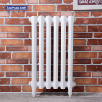 Energy Saving Cast Iron Water Home Radiator