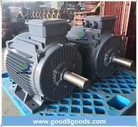 Y2  Cast Iron Electric Motor