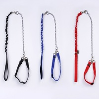 Prevent Bite Pet Dog Rope and Collar sets,Dog Walking Leash Lead and Collar with Chain