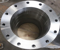 Competitive Price Carbon Steel Pipe Fittings Forged Flange