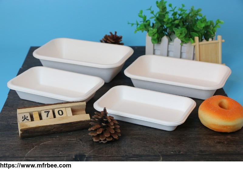 cheap_biodegradable_disposable_sugarcane_bagasse_food_dinnerware_container_to_go_take_away_box_disposable_food_containers