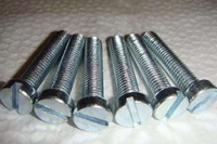 Cheese head slotted machine screw