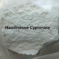 Testosterone Phenylpropionate powder steroids stock supply whatsapp:+86 15131183010