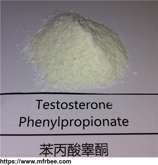 testosterone_enanthate_steroids_raw_material_powder_supply_rachel_at_oronigroup_com