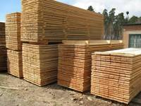 Timber ,Oak timber , Beech timber,Fir timber.  Pine timber