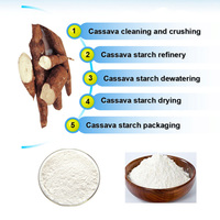 Small Scale Cassava Starch Processing Plant - Mfrbee com