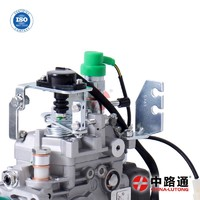 Electric Diesel Fuel Pump VE4-11E1150R173 fuel injection pump diesel