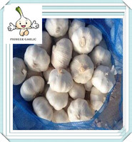 2016 chinese normal white garlic from shandong