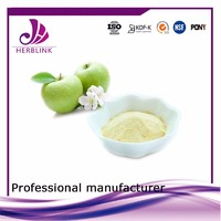 Free Sample juice concentrate Food Additive Apple Fruit Powder