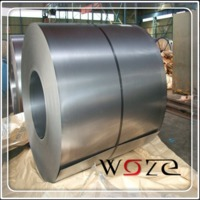 0.17mm Thickness SGCH Hot Dipped Galvanized Steel Coil For Roofing