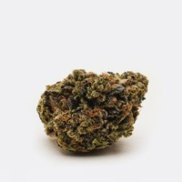 Buy Pink Kush (AA) from Chronic Store