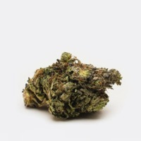 Purple OG (AA)| Chronic Store | Free Deals