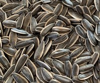 sunflower seeds China origin