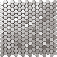 Stainless Steel Mosaic C5A021-2