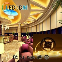 High Lumen warm white 40-55lm waterproof rechargeable led strip light for indoor decoration light
