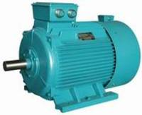 Three-phase Adjustment Speed Asynchronous Marine Motor