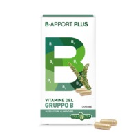 B-Apport Plus Vitamin B All Natural