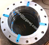 ANSI A182 F51/2205 steel pipe flanges